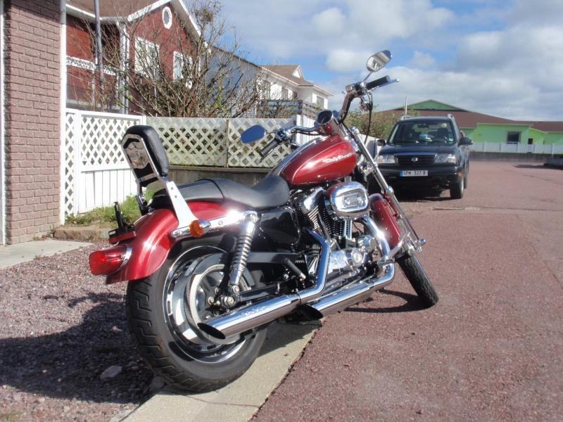 combien sommes nous en 1200 Sportster sur Passion-Harley - Page 37 Pa050010
