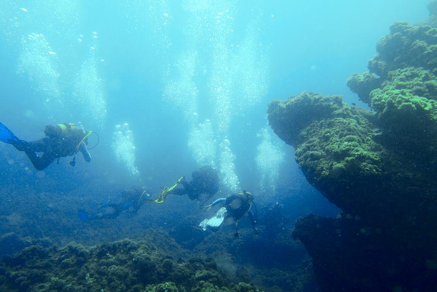 Promenade sous-marine. P1090916