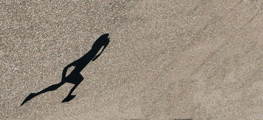 Course à pieds P1110716