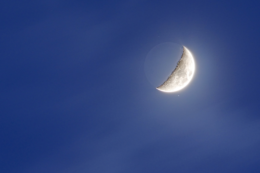 Lune cendrée du 11.02.19 P1130512