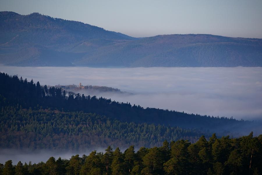 Mer de nuages ou purée de poix, c'est une question de point de vue. P1210710