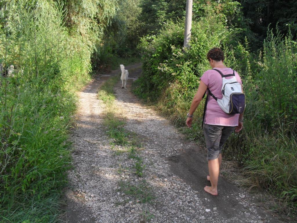 A piedi nudi nella riserva - Gerfalco, 8 luglio Sdc10011