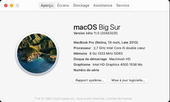 macOS Big Sur 11 Beta - Page 4 Captu131