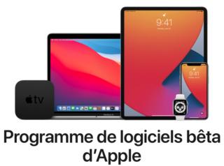 macOS Big Sur 11 Beta - Page 7 Captu150