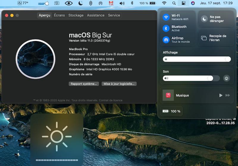 macOS Big Sur 11 Beta - Page 7 Captu217