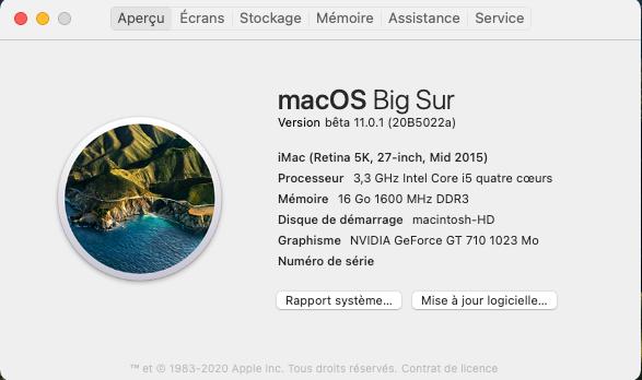 macOS Big Sur 11 Beta - Page 11 Captu279
