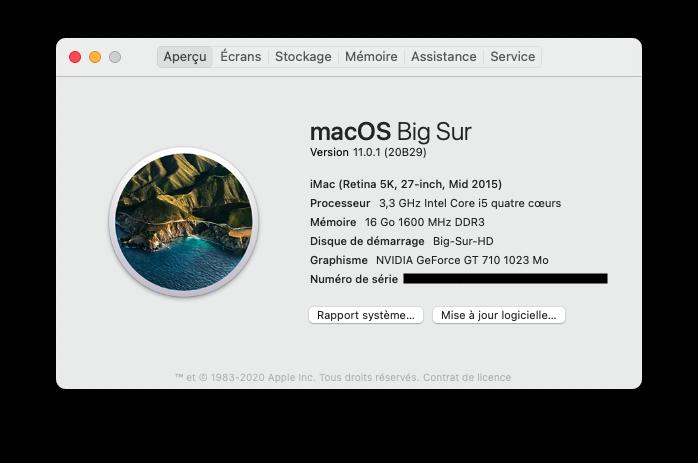 macOS Big Sur 11.0.1 (20B29) Finale version Captu293
