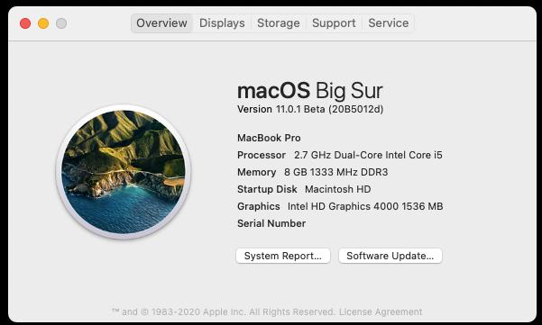 macOS Big Sur 11 Beta - Page 11 Screen66