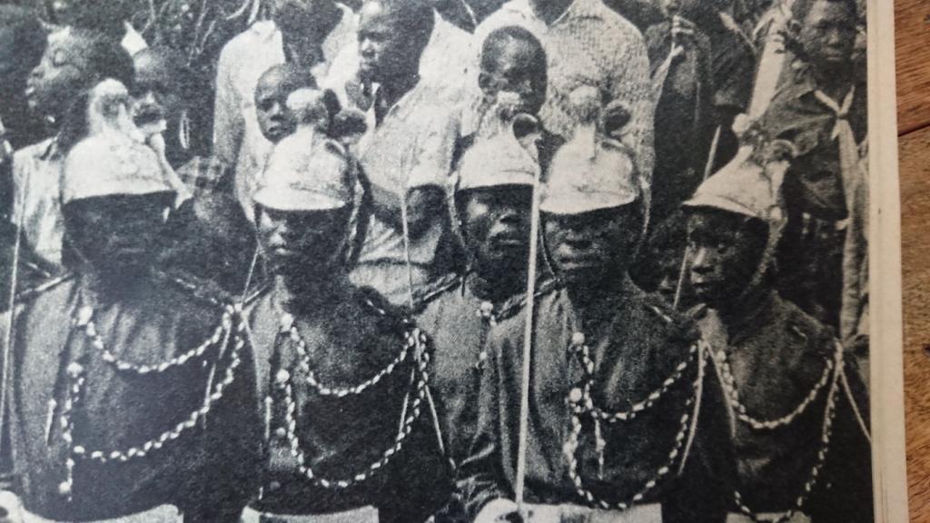 CASQUE DE DRAGON 1874 AU CONGO EN 1961 Dsc_9417