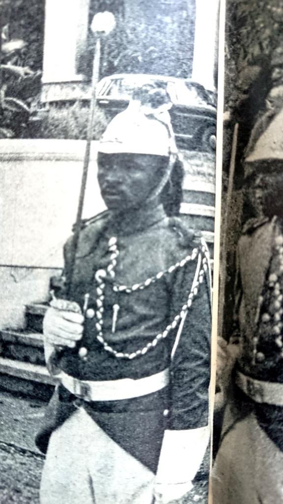 CASQUE DE DRAGON 1874 AU CONGO EN 1961 Dscpdc12