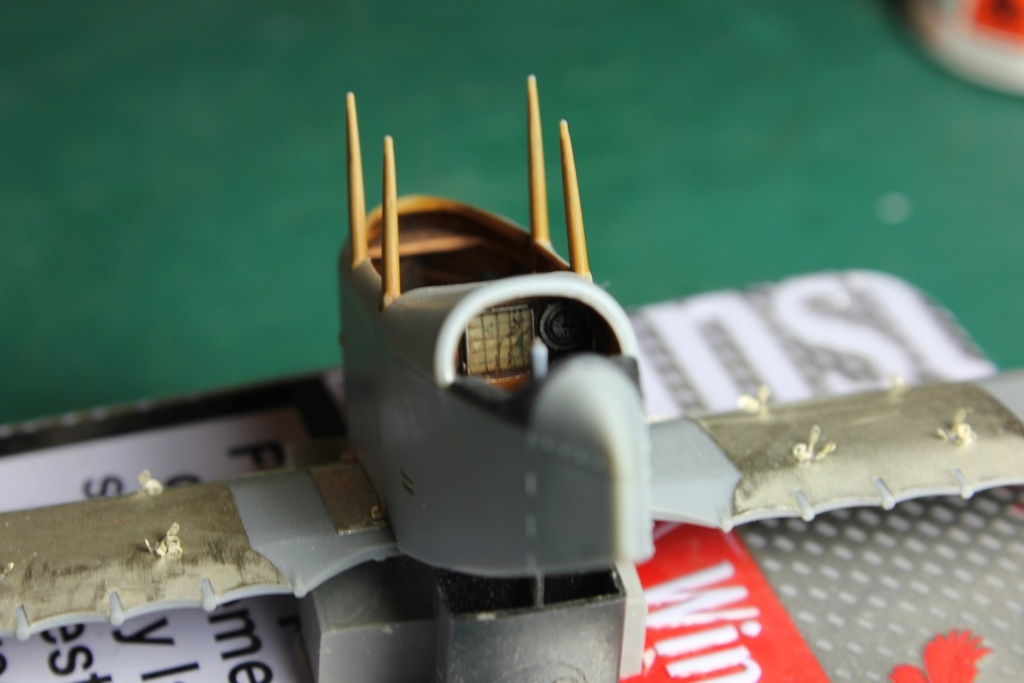 Caudron G.IV Late version 1:48 Copper State Models Img_7322