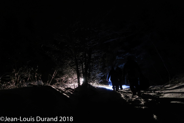 Réveillon du 31 dans la forêt 310