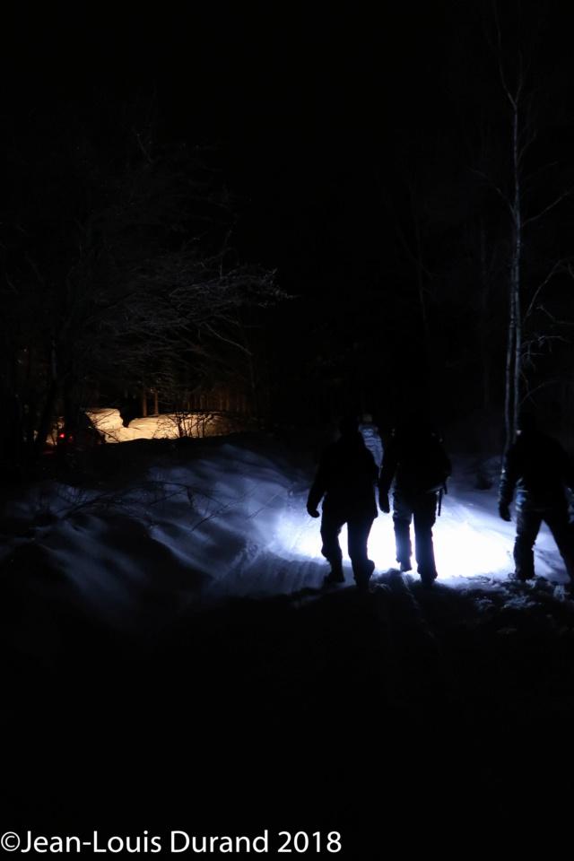 Réveillon du 31 dans la forêt Img_0515