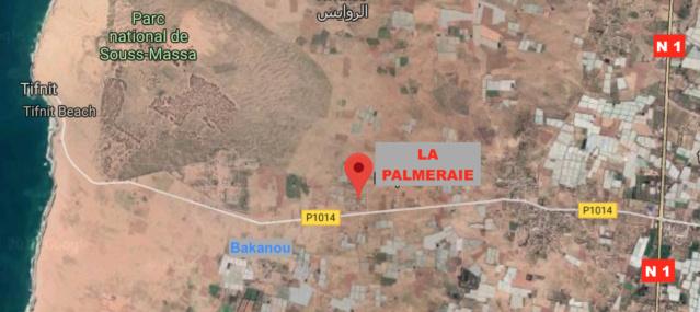 [Maroc Camp/Découverte] Camping LA PALMERAIE de Tifnit Captur10