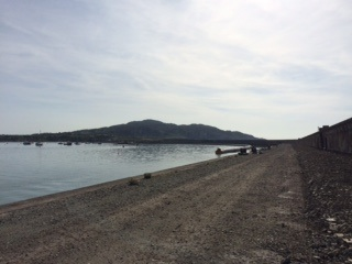 One Tip For Holyhead Breakwater Wrasse Fishing  Image11