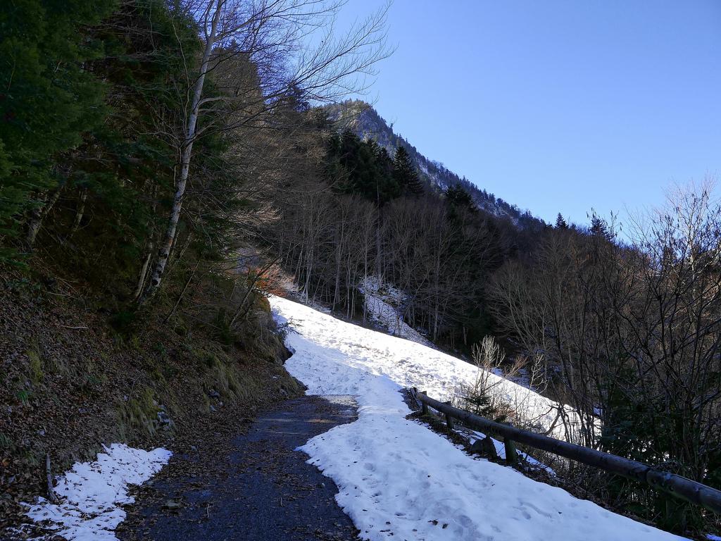 Le plateau de Bious  Av310