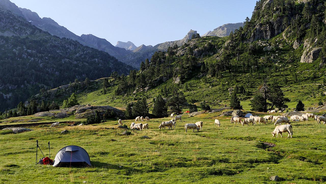 Le plateau du Marcadau, hautes Pyrénées ++ ajout de photos B3104510