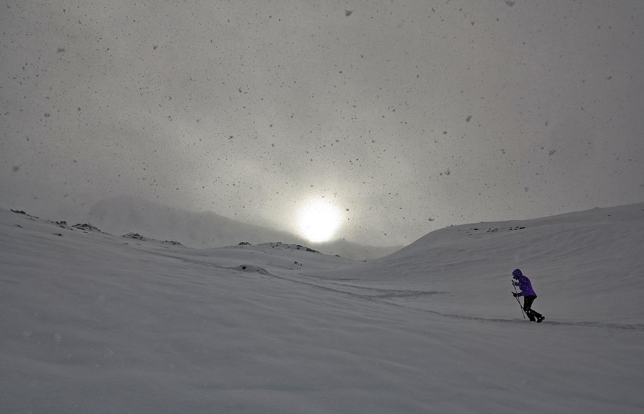 Blizzard, blizzard... Vous avez dit blizzard ? Img_5111