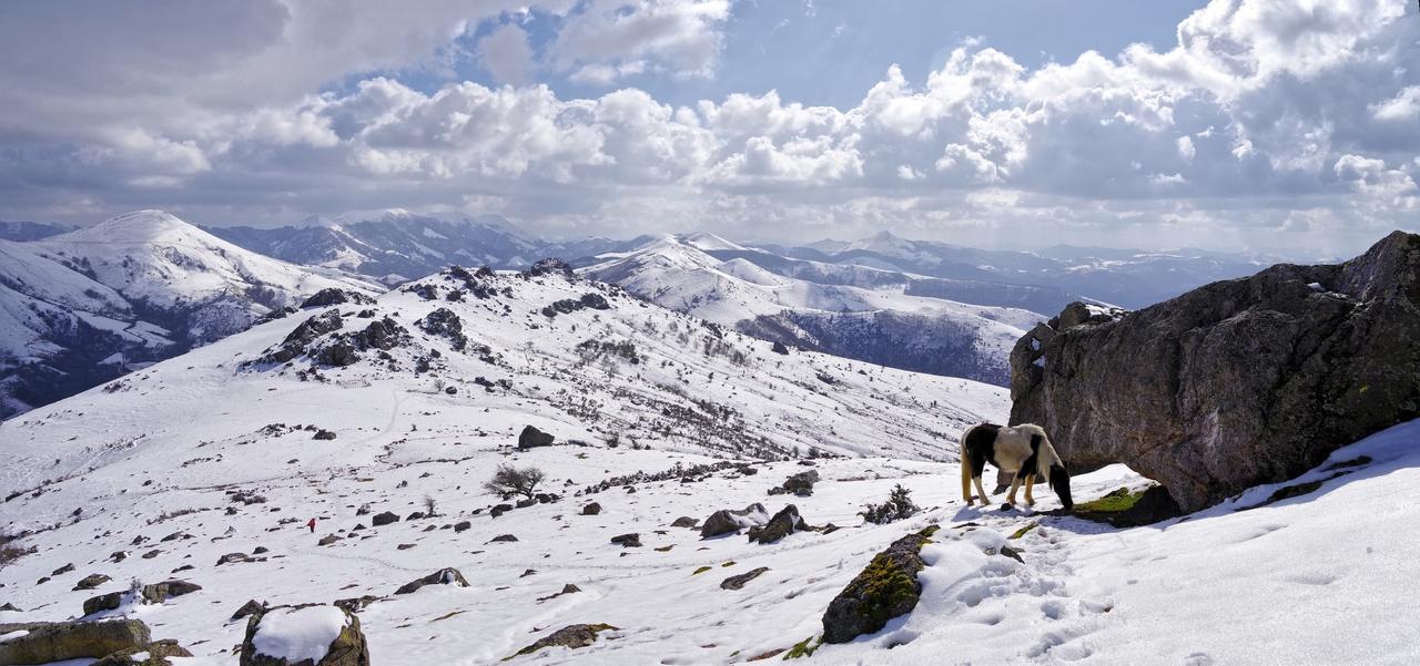 Montagne pays Basque Imgp5511