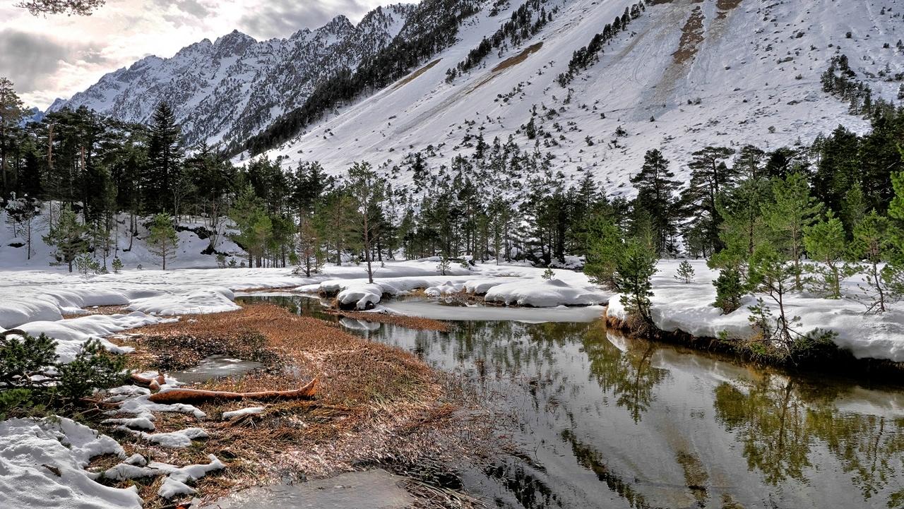 Un peu de neige et de l'eau... P1023112