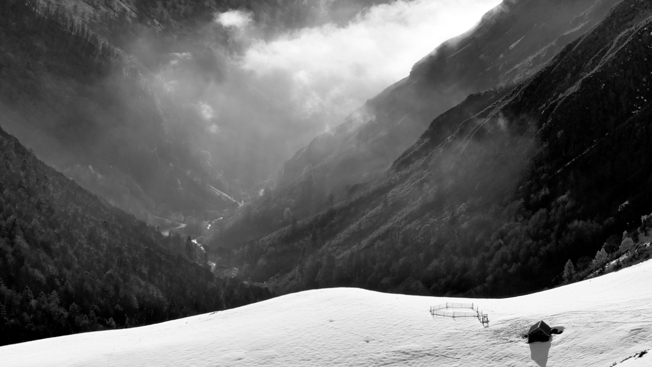 Montagne , vallée de Hautacam hautes Pyrénées P1023513