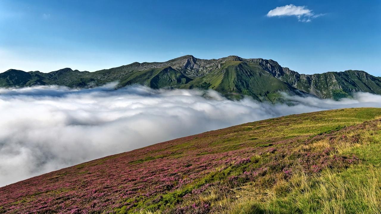 Mer de nuages en montagne P1236311