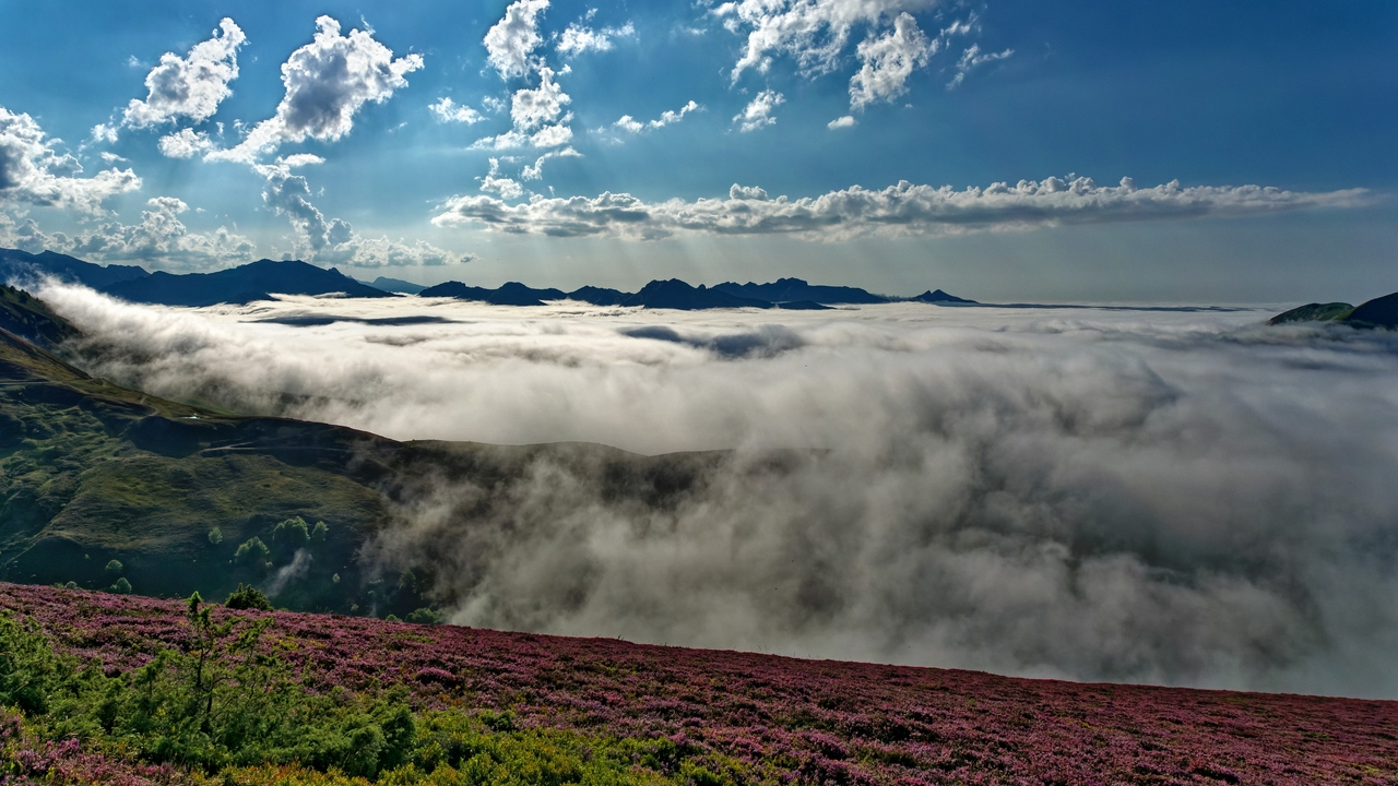 Mer de nuages en montagne P1236315
