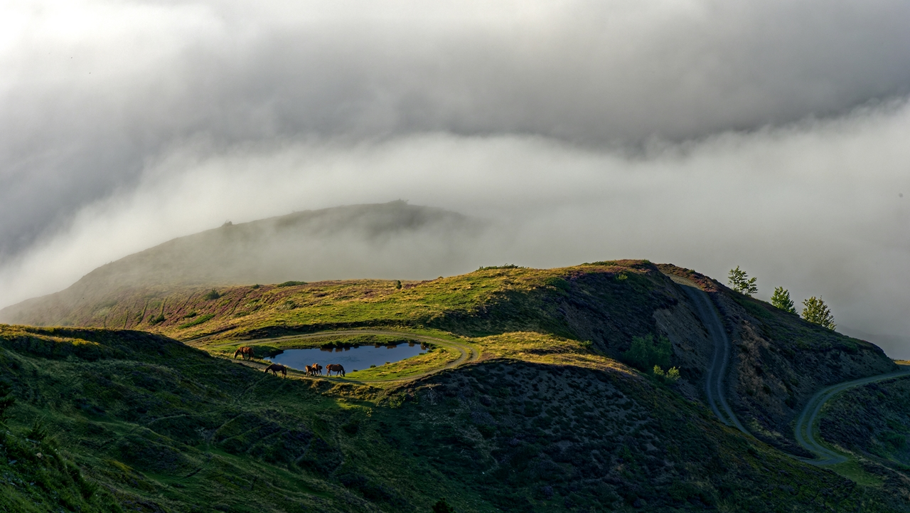 Mer de nuages en montagne P1236410