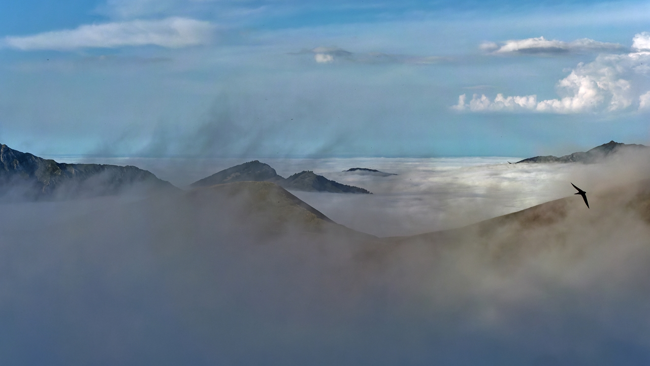 Mer de nuages en montagne P1236414