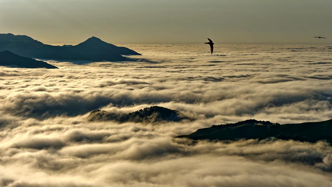 Mer de nuages en montagne P1236417