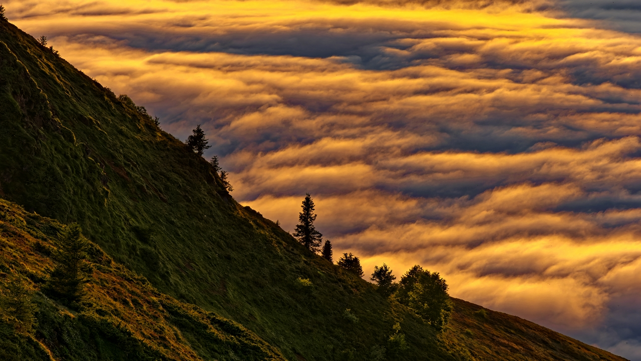 Mer de nuages en montagne P1236515