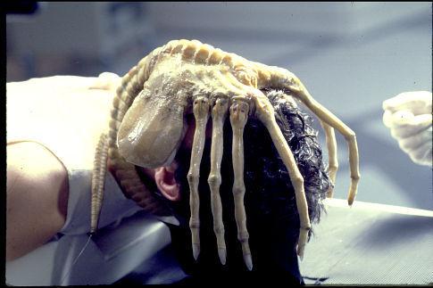 Limnopilos naiyanetri Alien-10