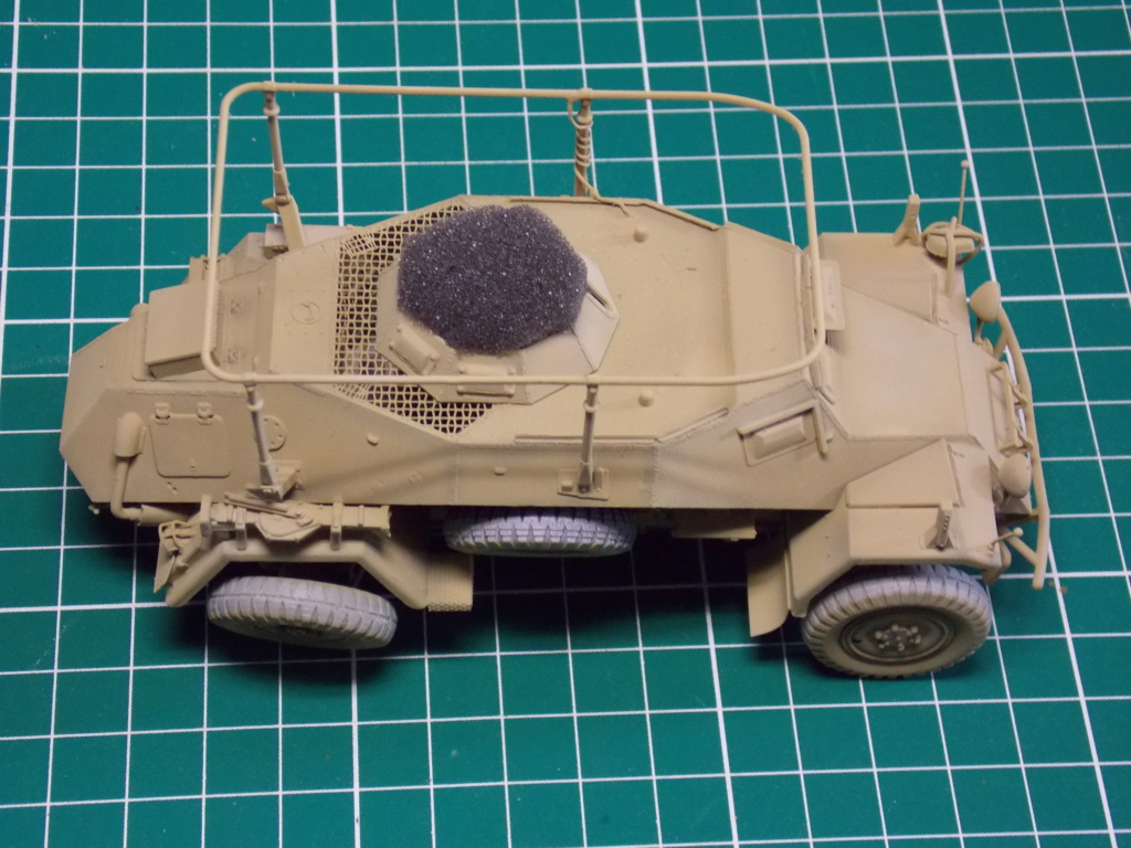 "12  SS ""BABY DIVISION"" Panther takom sdkfz 223hobby boss  1/35 - Page 2 Dscn1183"
