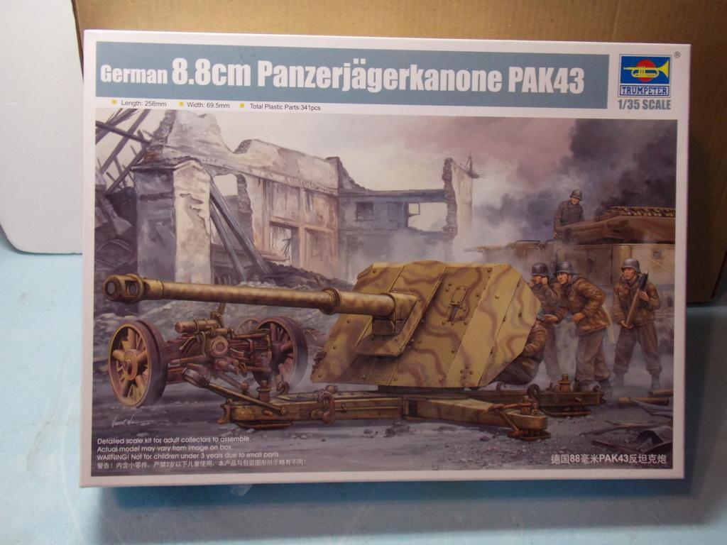 PAK 43 tracté par un Sd.Kfz.8 DB10 Trumpeter et décor MINIART + perso  1/35 Dscn6856