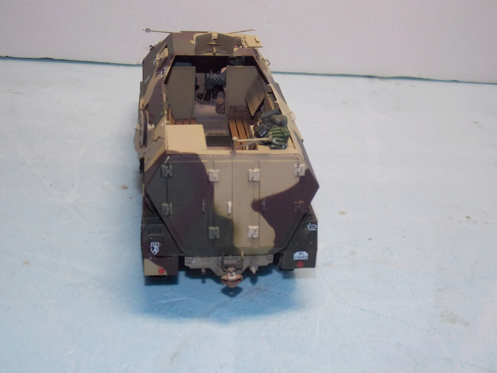 Mi roue mi chenille Pak 43 et semi chenillé lourd 1/35 TRUMPETER  Dscn7069