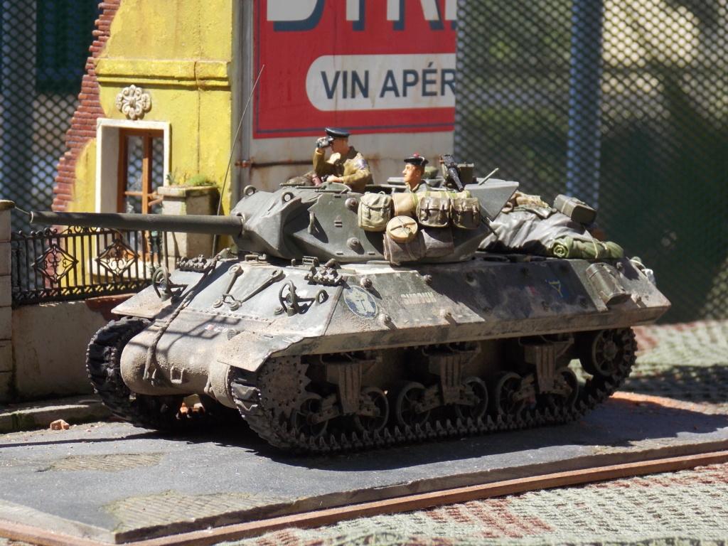 """Tank Destroyer """"Le Simoun """" - Page 3 Dscn7519"""