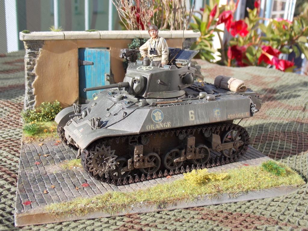 M3A3 Orange 12ème cuir Dscn7888