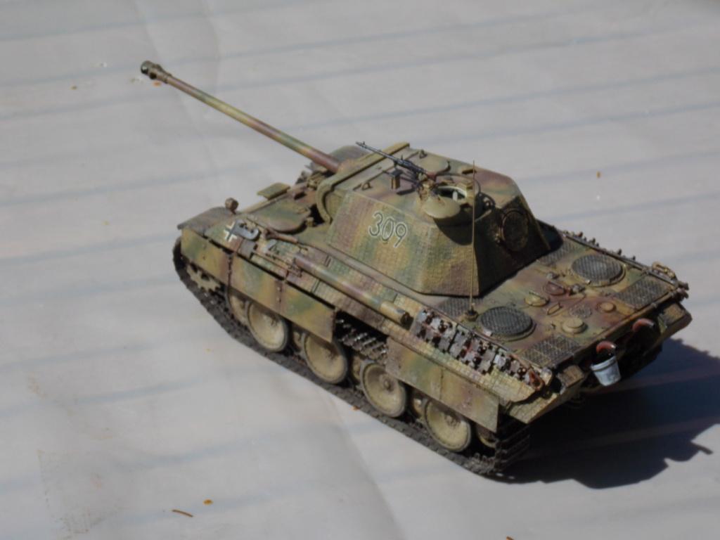 Baby Division Caen 1944 (Panther Takom/ Traction Tamiya- décor Mk35 au 1/35) - Page 17 Dscn8314