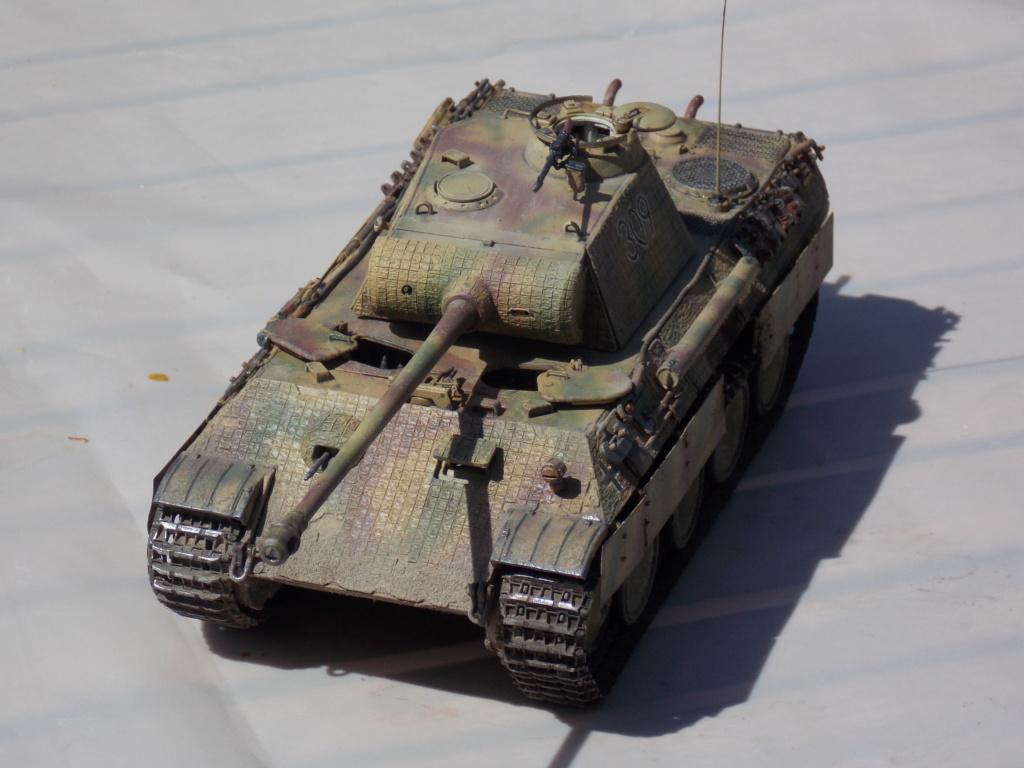 Baby Division Caen 1944 (Panther Takom/ Traction Tamiya- décor Mk35 au 1/35) - Page 17 Dscn8315