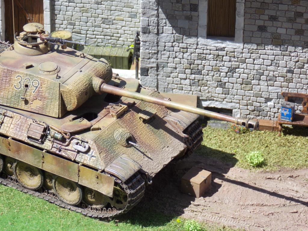 Baby Division Caen 1944 (Panther Takom/ Traction Tamiya- décor Mk35 au 1/35) - Page 17 Dscn8322