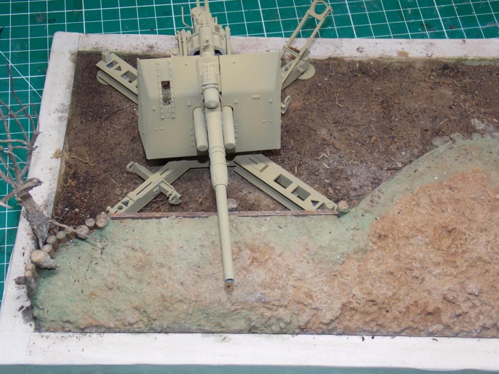 88mm en embuscade - Hauteurs de Bourguébus  Juin 44 (Dragon 1/35) fini - Page 2 Dscn8720