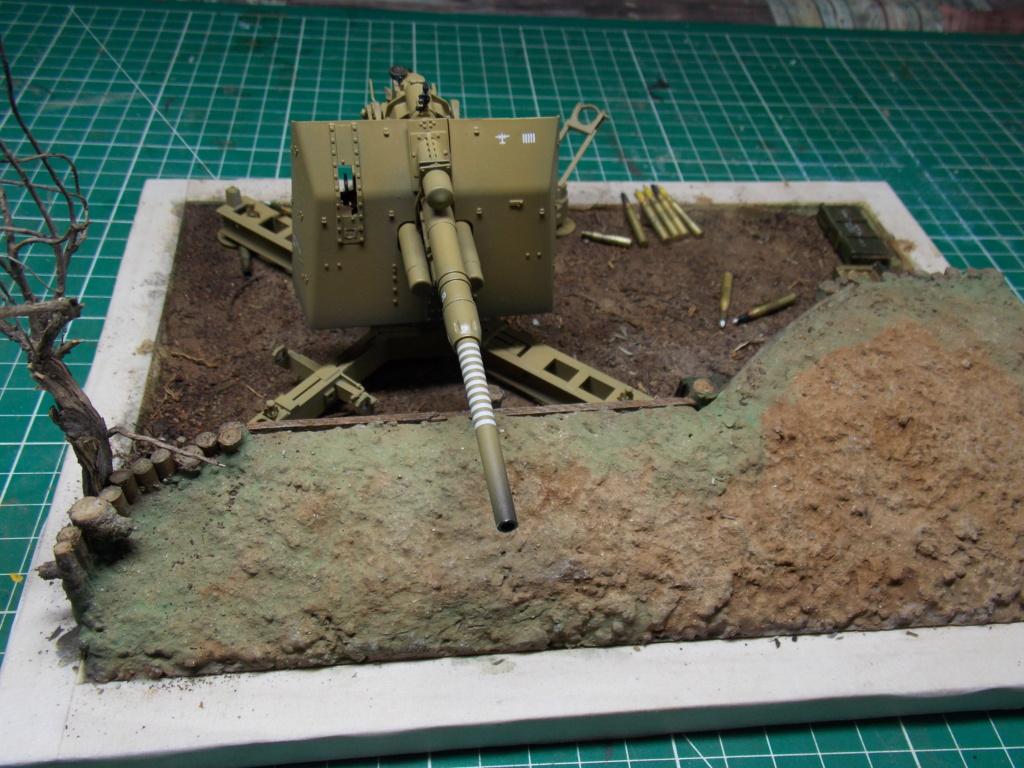 88mm en embuscade - Hauteurs de Bourguébus  Juin 44 (Dragon 1/35) fini - Page 3 Dscn8771