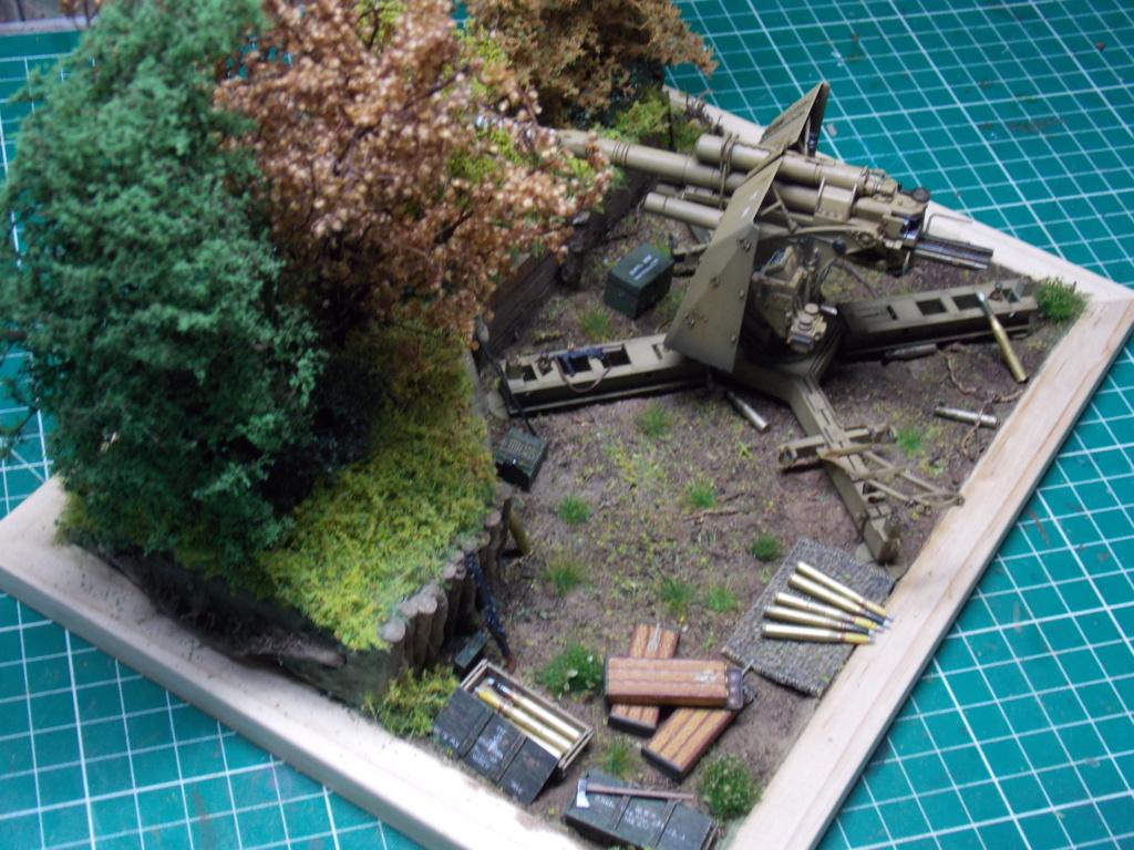 88mm en embuscade - Hauteurs de Bourguébus  Juin 44 (Dragon 1/35) fini - Page 4 Dscn8792