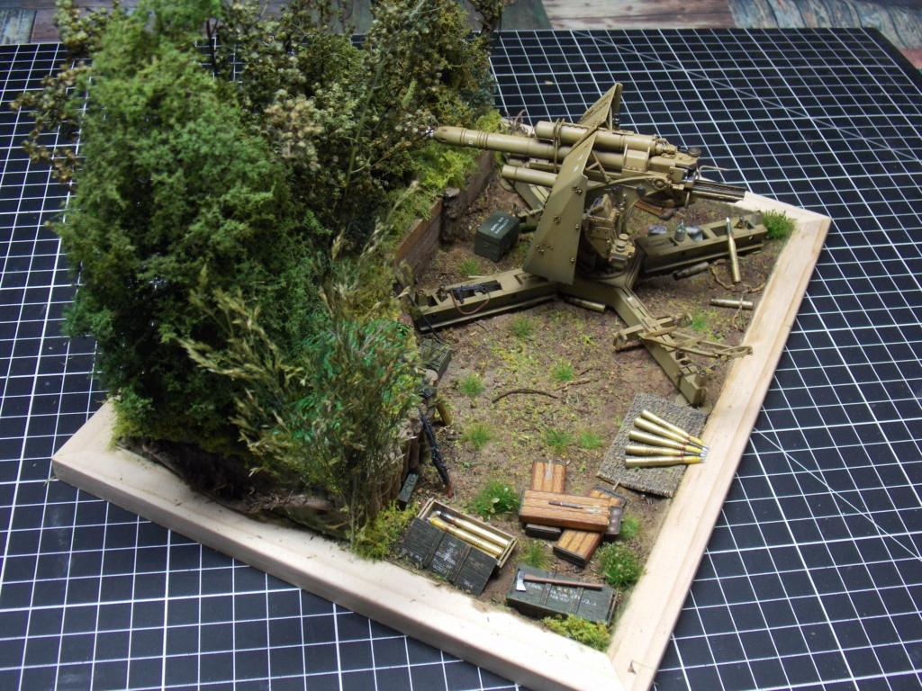 88mm en embuscade - Hauteurs de Bourguébus  Juin 44 (Dragon 1/35) fini - Page 4 Dscn8837