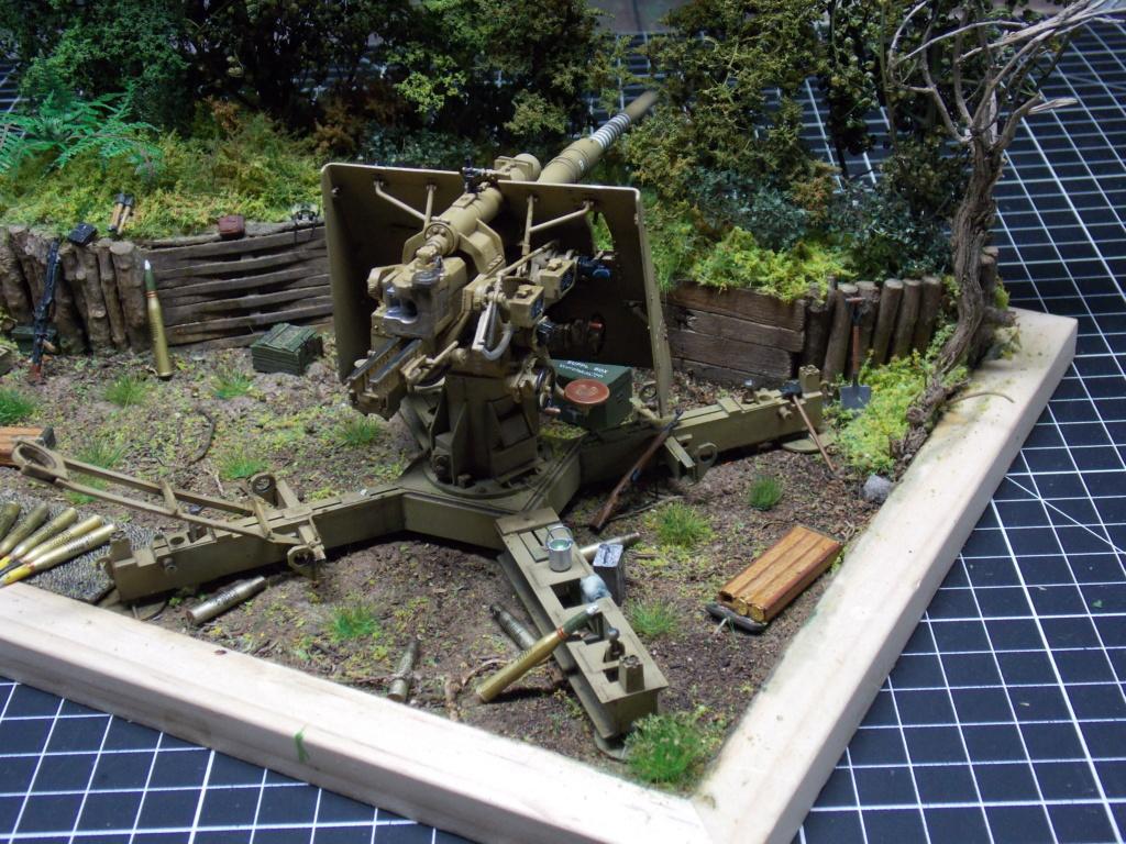 88mm en embuscade - Hauteurs de Bourguébus  Juin 44 (Dragon 1/35) fini - Page 4 Dscn8840