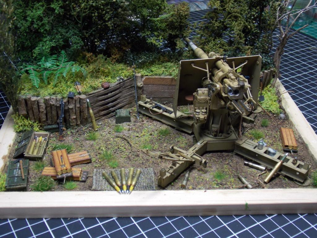 88mm en embuscade - Hauteurs de Bourguébus  Juin 44 (Dragon 1/35) fini - Page 4 Dscn8842