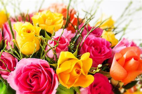 UNE PENSEE POUR POMPON Fleurs11
