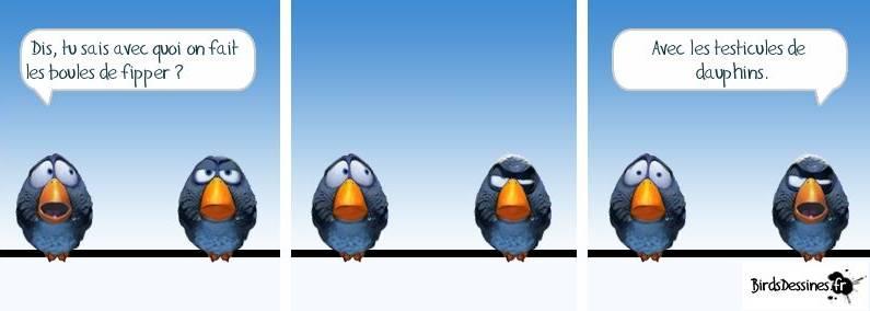 [Jeu] Association d'images - Page 20 Birds10