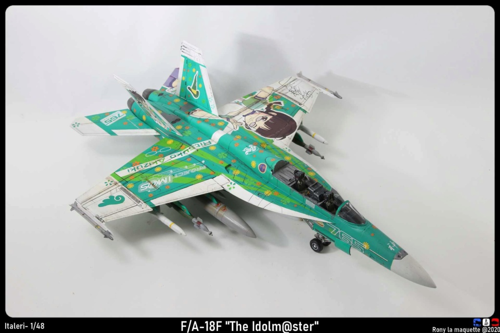 "Montage du F/A-18F ""The Idolmaster"",  1/48 - Page 3 Monta220"