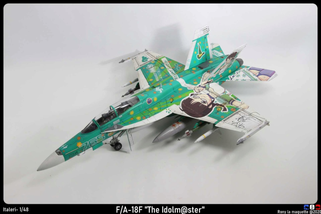 "Montage du F/A-18F ""The Idolmaster"",  1/48 - Page 3 Monta238"